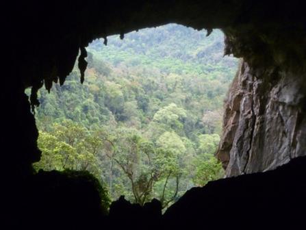 39 new caves found in Vietnam's Phong Nha-Ke Bang Park