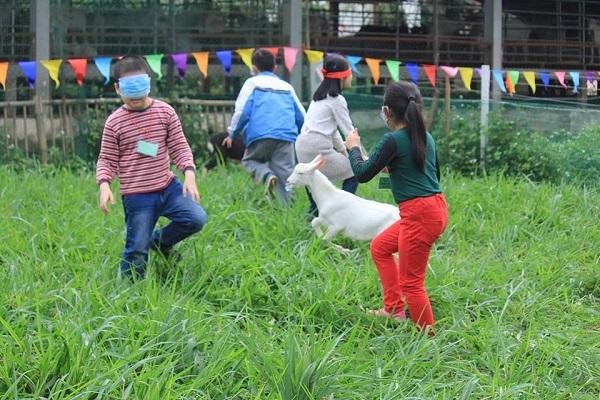 Detrang Farm - Agritourism opportunity